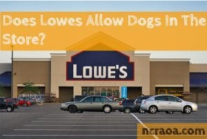 dogs at lowes