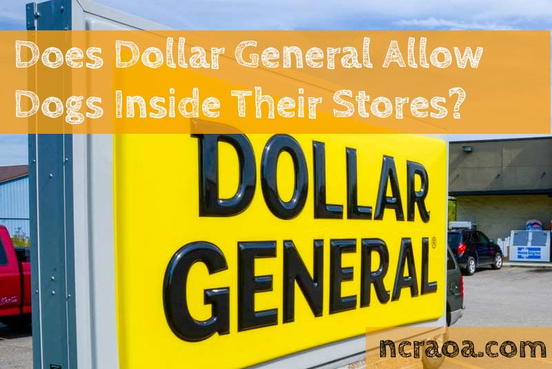 dollar general dogs policy