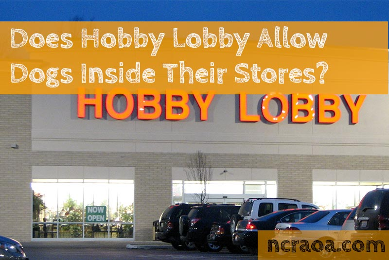 hobby lobby dogs policy