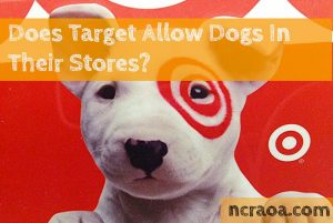 target store dog policy