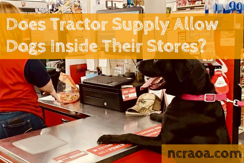 tractor supply dog policy