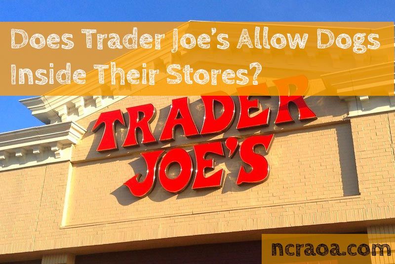 trader joe's dog policy