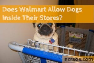 dog in walmart shopping cart