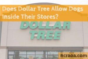 dollar tree dog policy