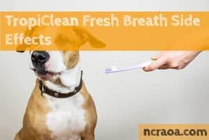 tropiclean fresh breath side effects