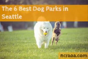 seattle dog parks