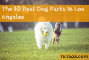 los angeles dog parks