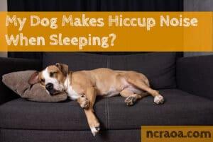dog hiccup sleeping