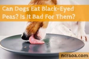 can dogs eat black eyed peas?