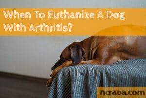 put down dog arthritis