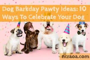 dog birthday ideas