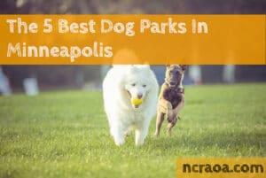 minneapolis dog parks