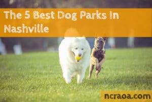 nashville dog parks