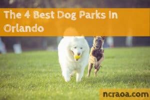 orlando dog parks