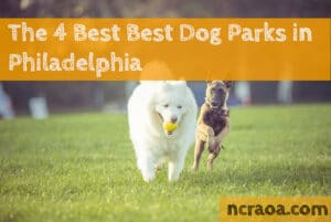 philly dog parks