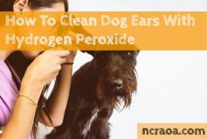 clean dog ears peroxide