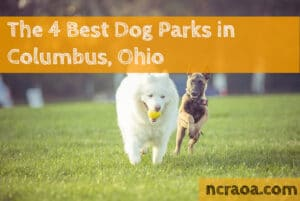 columbus dog parks