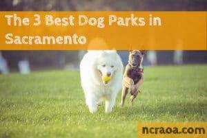 dog parks sacramento