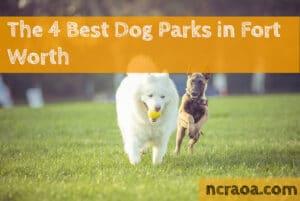 fort worth dog parks