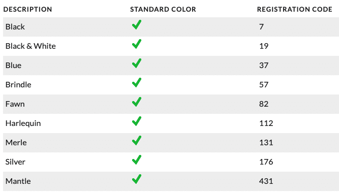 official great dane colors