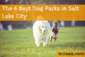 salt lake city dog parks